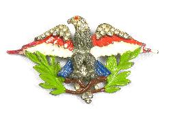 Enameled and rhinestone eagle with branches pin